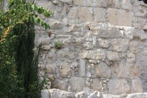 Neh wall